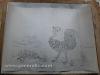Ivan Generalic, 1968, Rooster, drawing, 71x100 cm