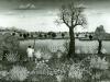 Josip Generalic, 1966, Fishing on Soderica, oil on canvas