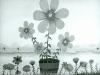 Josip Generalic, 1966, Flowers in a bucket, oil on canvas