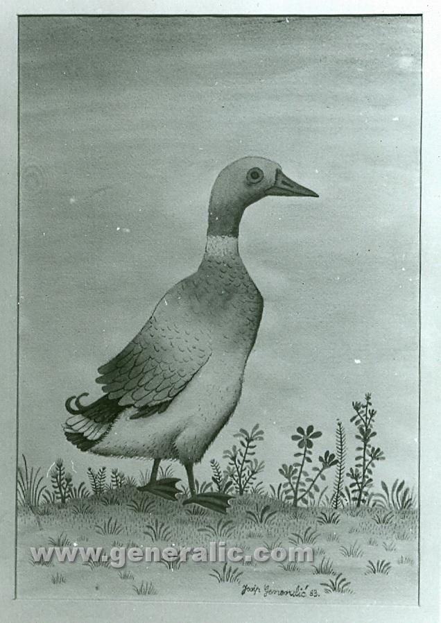 Josip Generalic, 1983, Duck, watercolour, oil on glass