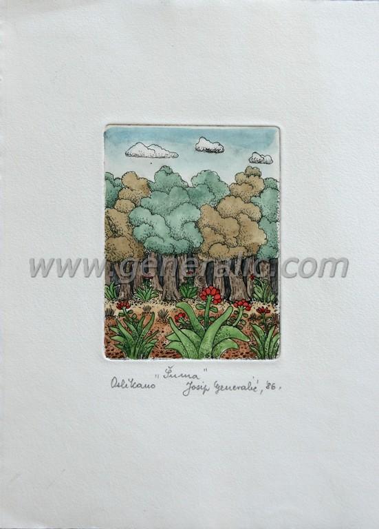 Josip Generalic, JG-F06-01(2), A forest, water-coloured etching, 27x20 cm 12x9 cm, 1986 - 200 eur