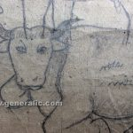 Ivan Generalic, 1963, Cows are resting, pencil on paper, 97x83 cm detail 04