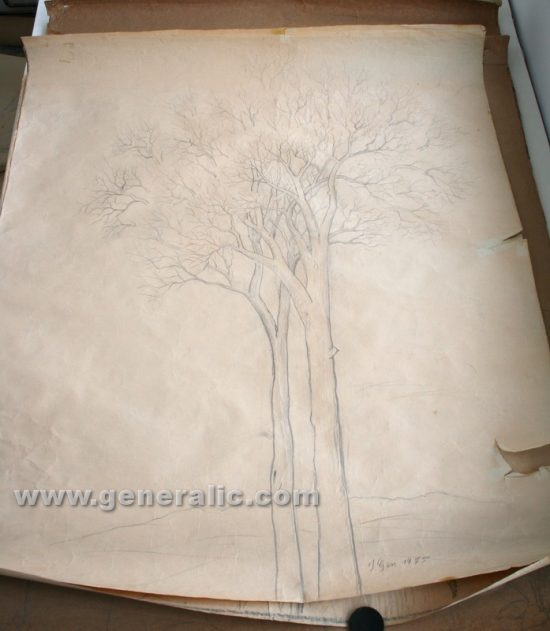 Ivan Generalic, Two trees, pencil on paper, 130x114 cm, 1975